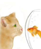 Cat and Fish (Day 185) by Hedwigs-art