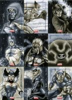 Marvel Universe Sktch Cards 04 by RichardCox