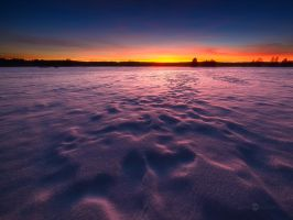 Purple Snow by JoniNiemela