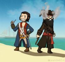 Two different kinds of pirates by Dulcamarra