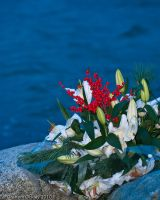 Flowers for Someone by gockleyphotography