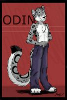 Odin by PurplePandog