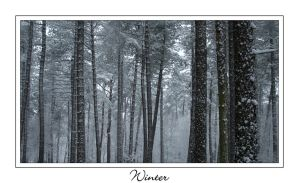 Winter by IsaFortyThirty1