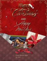 Holiday Card Project 2013 by Ola55
