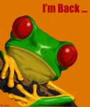 I'm Back by pakistanis