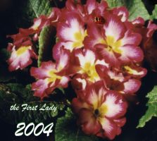 the First Lady 2004 by dirtycar74