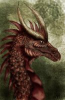 Dragon by Amazura