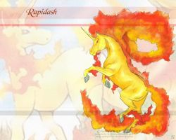 n78 Rapidash by GalopaWXY