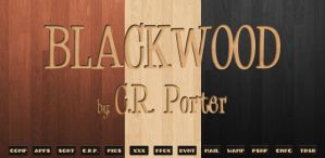 Blackwood by MrPorter