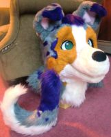 Merle Dog Fursuit Head and Tail by LaviLovepaw