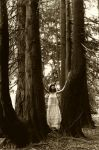 Lady in the Woods by Cyril-Helnwein