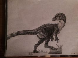 Feathered Dinosaur by WhiskerfaceRumpel