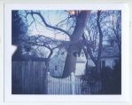 polaroid74 by firstkissfeelings