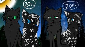 Redraw This 2011 to 2014 by foxyko