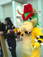 May expo 2010 - Bowser by regiinator