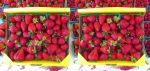Stereograph - Strawberries by alanbecker