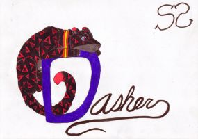 Dasher :finalized: by Zs99