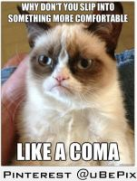 Oh, Grumpy Cat by dxdiagbg