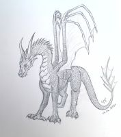 Another dragon sketch by Cynysi