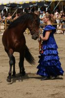 Andalusian horse stock II by lovergil