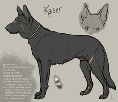 Character Ref: Kaiser. by Wrisk