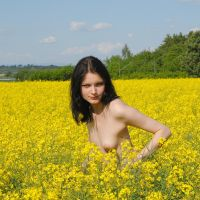 Spring in the colza field by rasmus-art