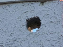 Hole in the Wall by RD-Stock