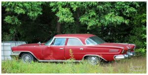 A Chrysler New Yorker In The Weeds by TheMan268