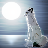 .: Who Are You Now? :. by MorningAfterWolf