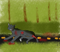 Cinderpaw's accident by teamush