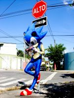Sonic cosplay by fresia89