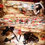 Adekan: Yoshiwara Anri and Shiro by SilentCircus90