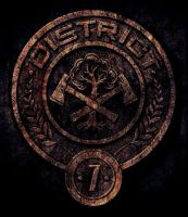District 7 Seal by CaptainIggy