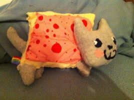 Nyan Cat Plush by WhatTheFlup