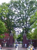 Harvard by TheClaudia
