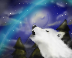 A wolf with the moon by DinoJ-13
