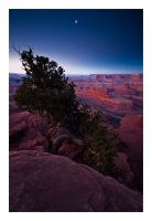 Dead Horse Point Twilight by collectiveone