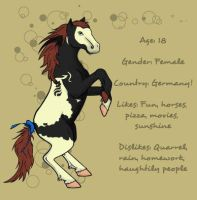 Horse ID by sparkycom