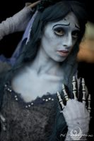 CORPSE BRIDE: ...A tear to shed... by Princess-ValeChan