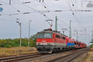 1142 664-0 with freight - 2011 by morpheus880223