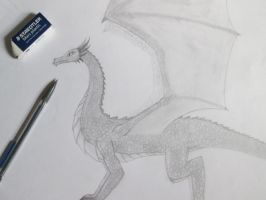 Dragon Sketch by TheDraconian
