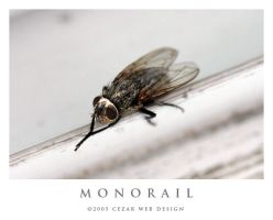 Monorail by cezars