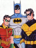 Batman, Robin and Nightwing by calslayton