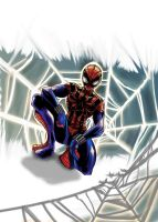 spectacular spiderman by zhane00
