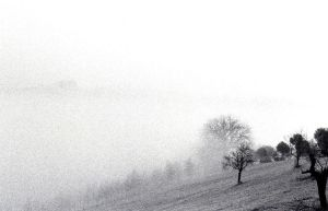 nebbia by Quiquegg