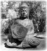 Buddha in BW by JNS0316