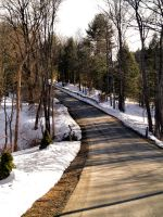 Bend in the Road by stitch52481