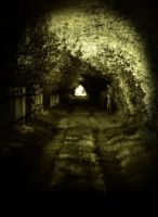 Light at the end of the tunnel by seba-j