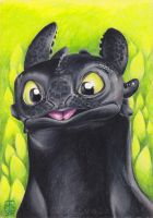 Toothless by Kattvalk