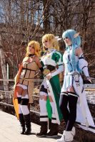 Sword art online Group Cosplay by mercaspro